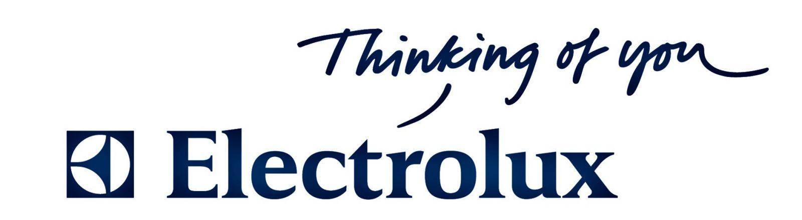 Electrolux-kondicionavimo profesionalai.JPG